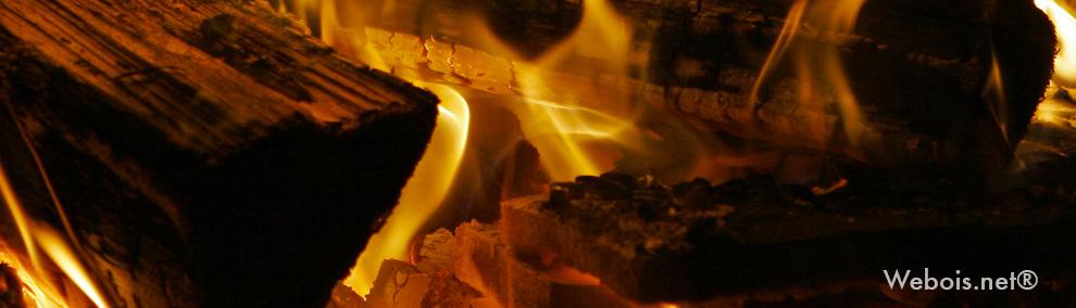 feu de bois