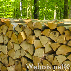 stock de bois de chauffage