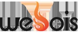 Webois – spécialiste de la vente de bois de chauffage par internet